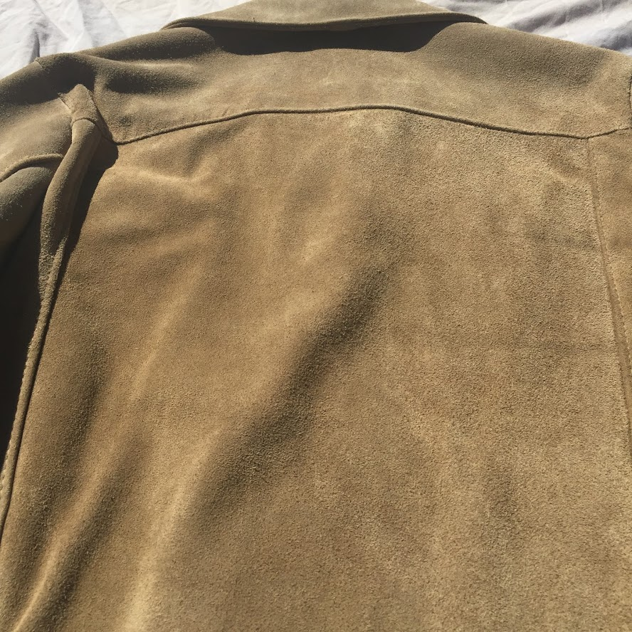 Back Panel Suede View.JPG