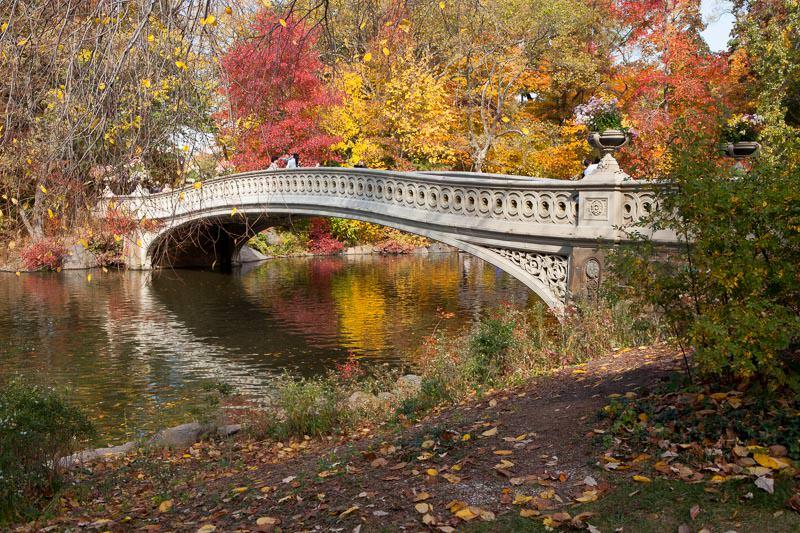 central_park_photography_tour_new_york-3.jpg