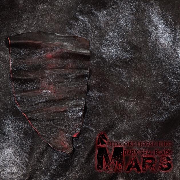 Mars Leather.jpg