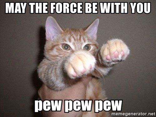 may-the-force-be-with-you-cat meme.jpg