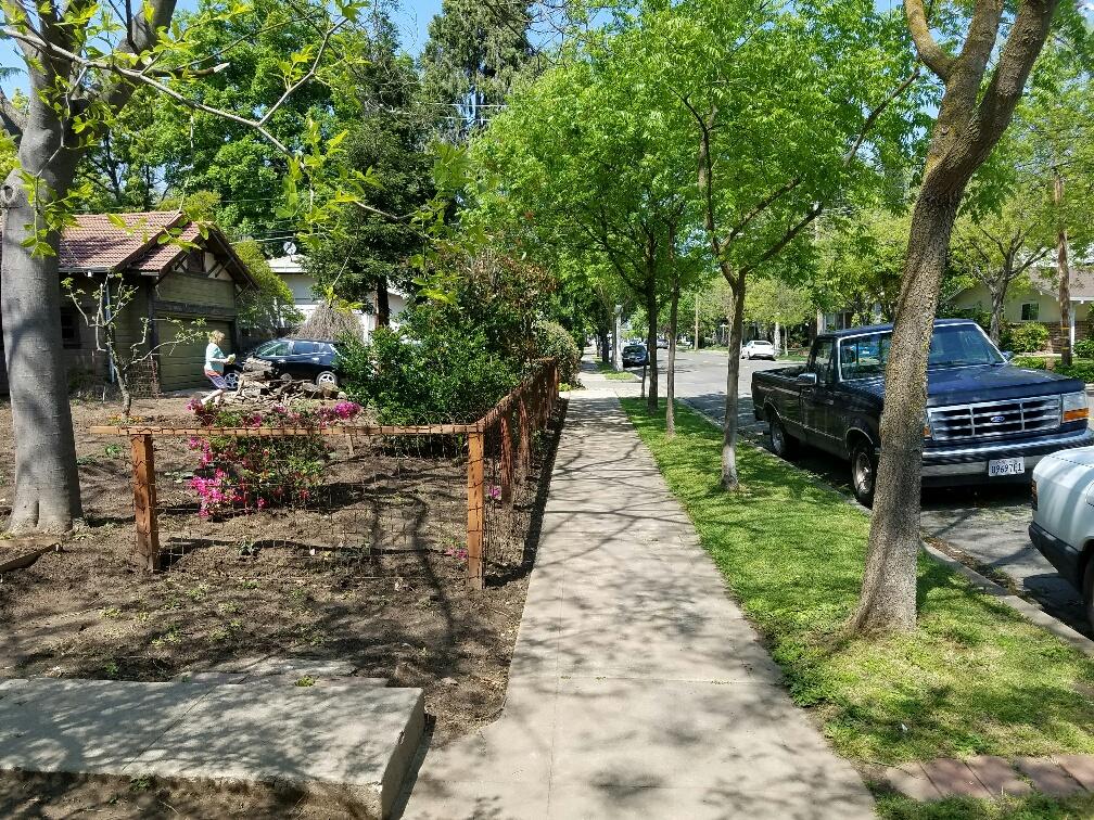 north clean sidewalk_resized.jpg
