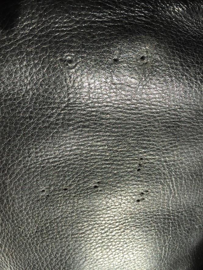Pin Holes Close Up.JPG