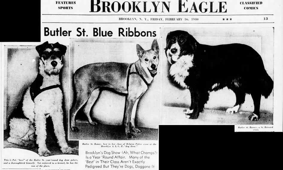 The_Brooklyn_Daily_Eagle_Fri__Feb_16__1940_ (3).jpg