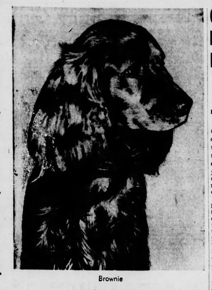 The_Brooklyn_Daily_Eagle_Wed__Nov_27__1940_(3).jpg