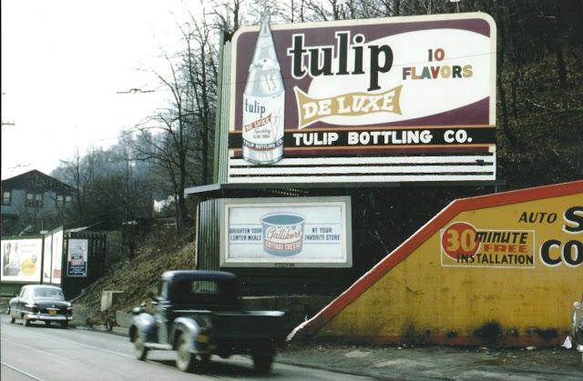 Tulip - 1950's.jpg